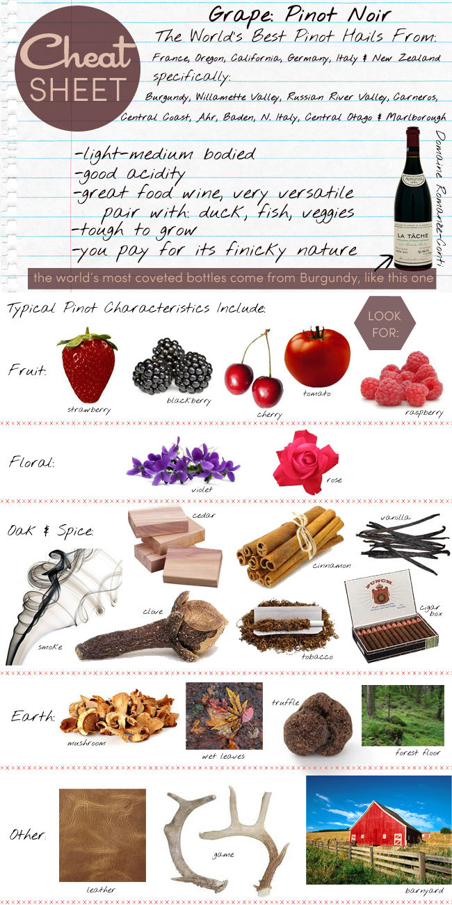 pinot noir cheat sheet Learn the dinner table facts about the ever-loved grape variety of pinot noir we've created a brief history of the grape, the nickname, and the facts.
